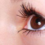 La vista - Anatomia oculare